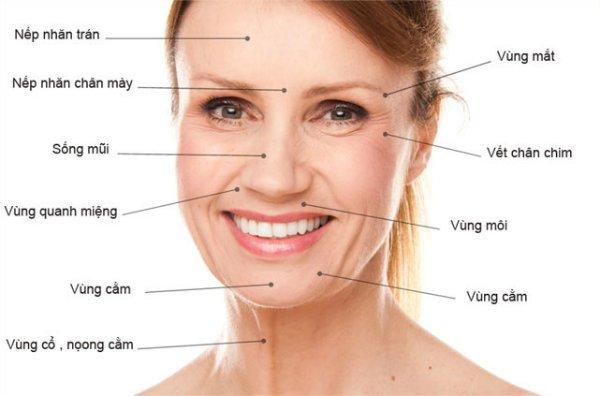 dấu hiệu lão hóa da, dấu hiệu lão hóa da mặt, dấu hiệu da bị lão hóa, dấu hiệu da lão hóa, dấu hiệu lão hóa da là gì