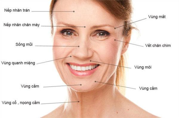 chống lão hóa da mặt, cach chong lao hoa da mat, cách chống lão hóa da mặt