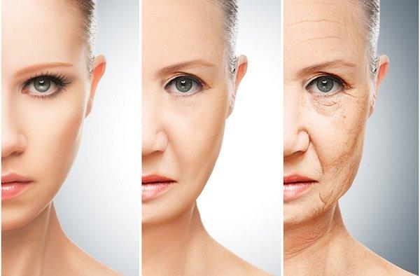 nguyên nhân và quá trình lão hóa