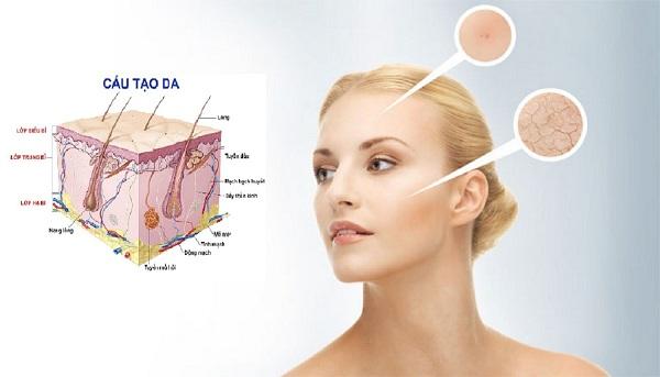 đo tuổi của da, app đo tuổi da, kiểm tra tuổi của da, tuổi của da